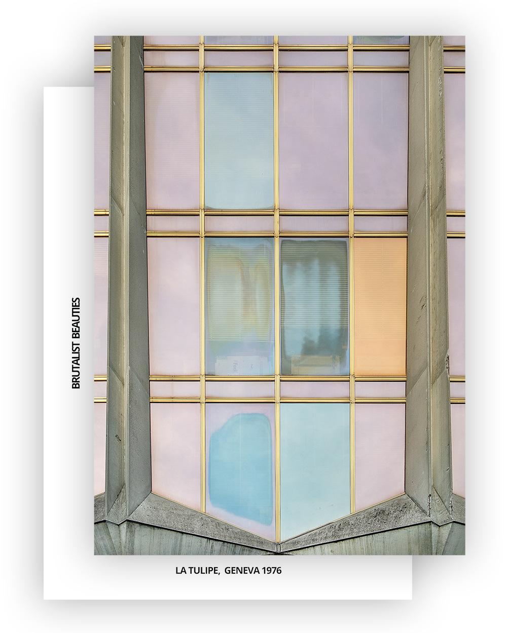 La Tulipe No2 Postcard, A6 I Brutalist Beauties I © Heartbrut / Karin Hunter Bürki